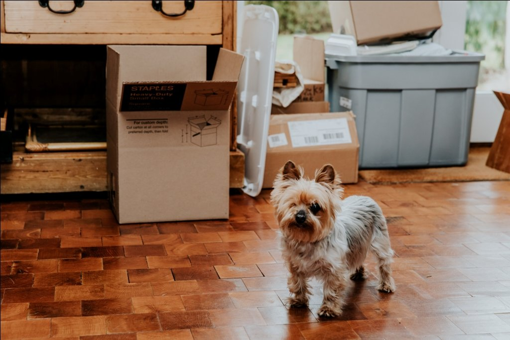 What Movers Won't Move | Moving Helpers NYC | Moving New York