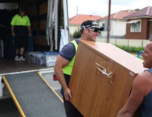 Who Are Professional Movers?