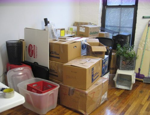 Managing Moving Day: Planning and Preparations