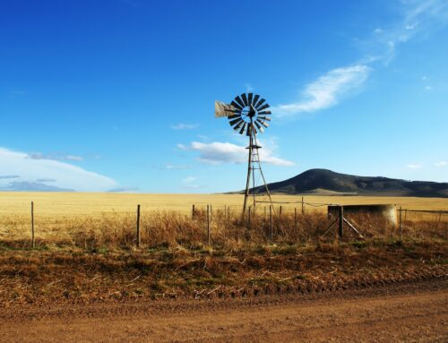 Pros and Cons of Moving to the Country