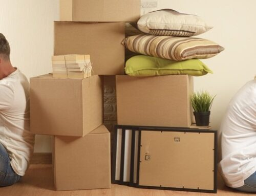 Moving is a Beneficial Stress